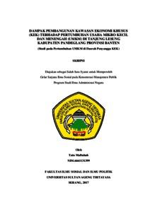 Dampak Pembangunan Kawasan Ekonomi Khusus Kek Terhadap Pertumbuhan Usaha Mikro Kecil Dan Menengah Umkm Di Tanjung Lesung Kabupaten Pandeglang Provinsi Banten Studi Pada Pertumbuhan Umkm Di Daerah Penyangga Kek Eprint Repository